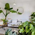 grande pianta appartamento